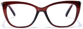 Coolwinks Brown Women's Frames