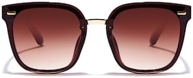 Coolwinks Brown Square Sunglasses