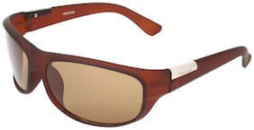 Creature Brown Wrap Around Sunglasses ( SUN-117 )