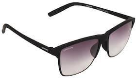 CREATURE Wayfarer Sunglasses ( DOIT-101 )