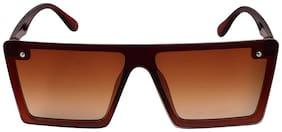 Davidson Men Aviators Sunglasses