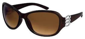Dervin Brown Frame Brown Lens Over Sized Sunglasses for Women
