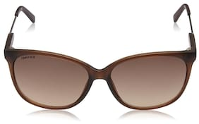 FASTRACK P346BR2 SIZE 58 BROWN ROUND UV PROTECTED SUNGLASSSES