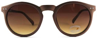 Fastrack UV protected Round Sunglasses (P383BR7)