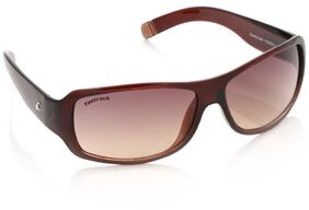 Fastrack Wrap Sunglasses (Brown) (P089BR2)