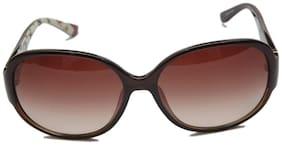 Feragammo Sunglass Brown Oval Sunglasses