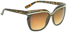 Hawai Brown Cat Eye Sunglassess