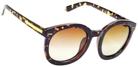 Hawai Brown Frame Round Frame Sunglasses