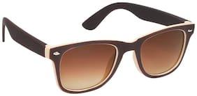 Hawai Brown Wayfarer Sunglass