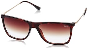 IDEE [1934 C3] BROWN BROWN RECTANGLE UV PROTECTED SUNGLASSES