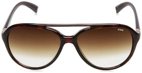 IDEE Gradient Aviator Men's Sunglasses - (IDS2260C2SG|58|Brown Half Gradient Color)