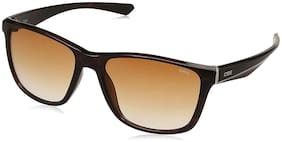 IDEE Gradient Square Men's Sunglasses - (IDS2445C2SG|56|Brown Gradient Color Lens)
