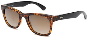 IDEE Regular lens Wayfarer Sunglasses for Men , Sunglass & Box