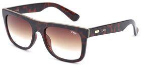 IDEE Wayfarer Uv Protected Sunglasses