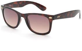 IDEE Regular lens Wayfarer Sunglasses for Men , Sunglass & Box