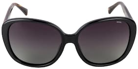 Invu Women Oval Sunglasses