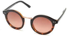 Joe Black Brown Round Frames Sunglasses ( Jb-821-c2p )