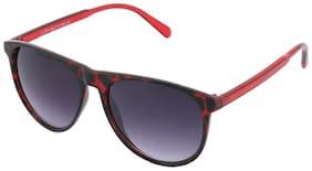 Joe black Men Wayfarers Sunglasses