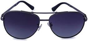 Marc Louis Polarized lens Cat Eye Sunglasses
