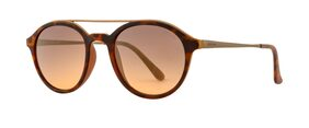 Mens Brown Round Frame Sunglass OP-1667-C03