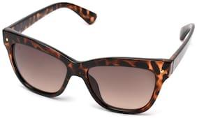 Mtv Mtv-132-c3 Brown Cat-eye Sunglasses