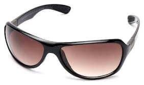 MTV Roadies Brown Sports Sunglassess (RD-132-C1)