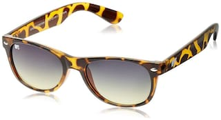 MTV Wayfarers SUNGLASSES 51