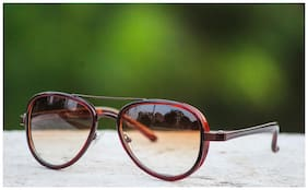 New Look Round Shape Light Brown Glass & Frame Sunglasses