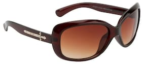 Ochila Brown Bugeye Sunglasses (LS 217)
