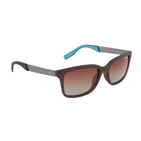 Park Avenue Polarized Rectangle Wayfarer Sunglasses (PA-7119-C02)