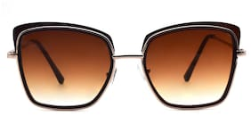 Peter Jones Women Cat-Eye Sunglasses