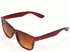 Royal Son Brown Wayfarer Sunglasses