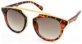 Stacle Geometric Browline Retro Round Unisex Sunglasses (ST7072|58|Multiple Colours)