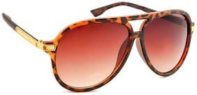 Stacle UV Protected Aviator Unisex Sunglasses (Havana Brown Frame) (STJOA1846...