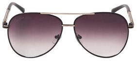 Stylish Ted Smith Black/Gold Aviator Sunglasses
