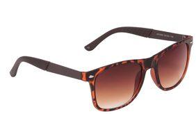 Ted Smith Brown Wayfarers Sunglasses