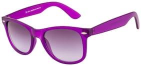Ted Smith Men Wayfarers Sunglasses