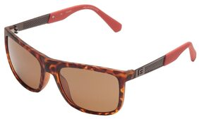 Guess  6843 52H Size 57-18-140 Brown Wayfarer Sunglasses