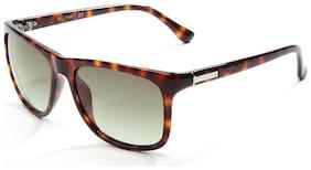 Calvin Klein CK3160S 005 Size 55-17-130 Brown Wayfarer Sunglasses