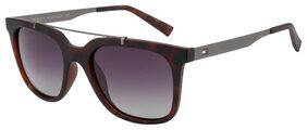 Tommy Hilfiger Unisex Wayfarers Sunglasses (TTH0049)Size- 52 mm