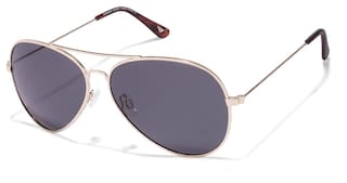 dfce15554f Vincent Chase Top Guns Vc S10087 Golden Tortoise Grey C1 Aviator Sunglasses