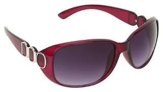 Zyaden Women Oval Sunglasses