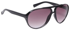 Ted Smith Shiny Black Aviator For Unisex