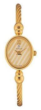 Titan Raga  197Ym01 Women Analog Watch