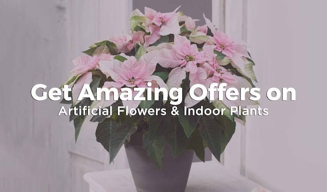 Artificial flowers & indoor plants